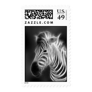 sellos de la cebra de la radiografía