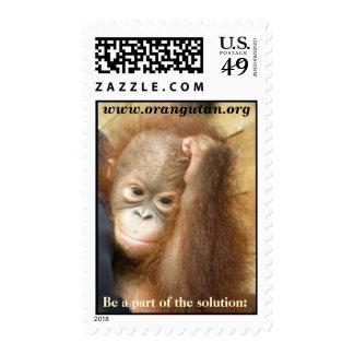 Sellos de la fauna: Caridad para la especie en pel
