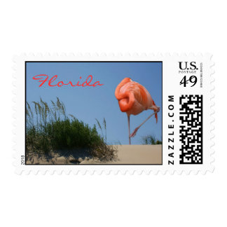 Sellos de la Florida del flamenco de la playa