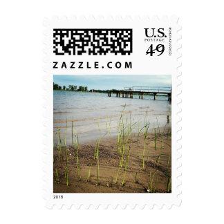 Sellos de la hierba del mar de la playa de la aren