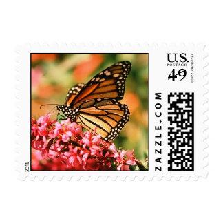 Sellos de la mariposa de monarca