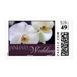 Sellos de la orquídea del boda de enero
