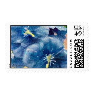 Sellos de las amapolas azules