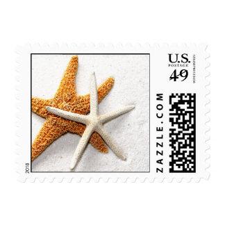Sellos de las estrellas de mar