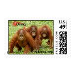 Sellos de los amigos del Outreach 3 del orangután
