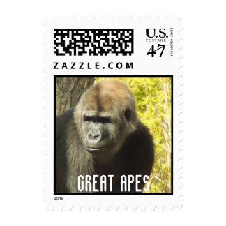 Sellos de los grandes monos de Gorila