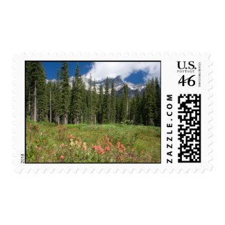 Sellos de los Wildflowers de Banff