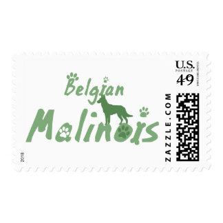 Sellos de Malinois del belga de la verde menta