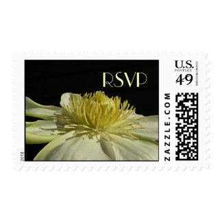 Sellos de marfil de RSVP de la flor de Clemaits