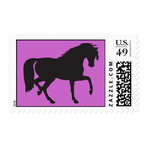 Sellos del caballo