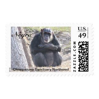 Sellos del chimpancé de Negra