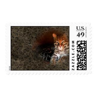 Sellos del gato/del gatito de Bengala