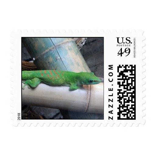 Sellos del Gecko gigante del día de Madagascar peq