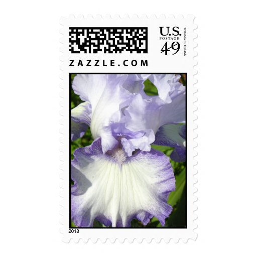 Sellos del iris barbudo