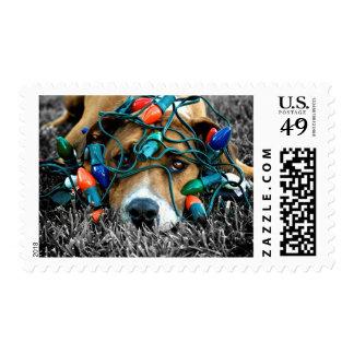 Sellos del navidad del perro