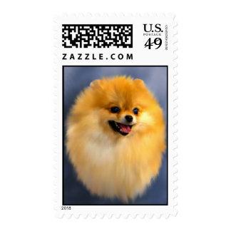 Sellos del retrato de Pomeranian