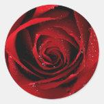 Sellos del rosa rojo etiquetas