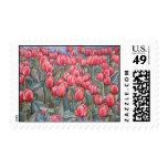 SELLOS del tiempo del tulipán