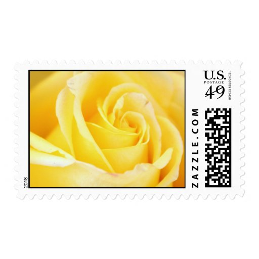 Sellos elegantes del rosa amarillo