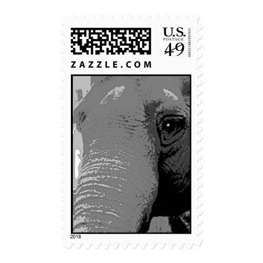Sellos en peligro del elefante