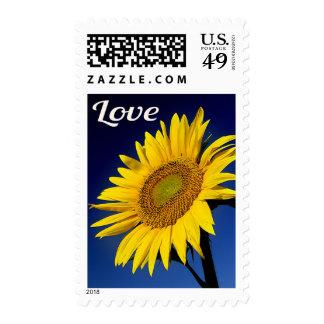Sellos florales del girasol amarillo del amor