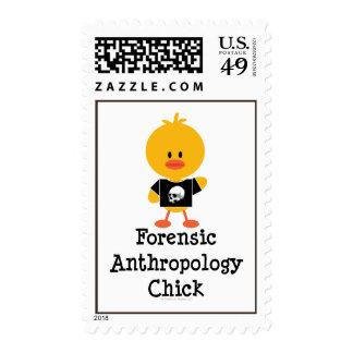 Sellos forenses del polluelo de la antropología