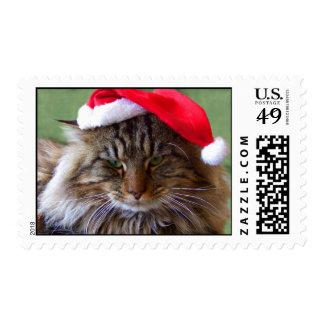 Sellos irritables del gato del navidad