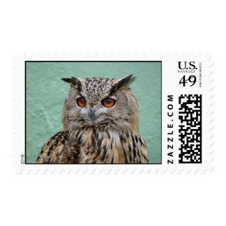 sellos Largo-espigados del búho
