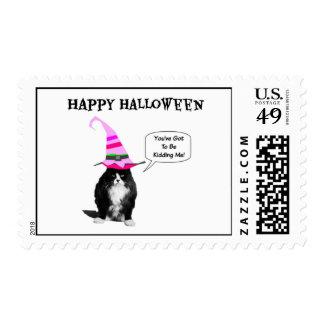 Sellos postales del gato gruñón divertido de
