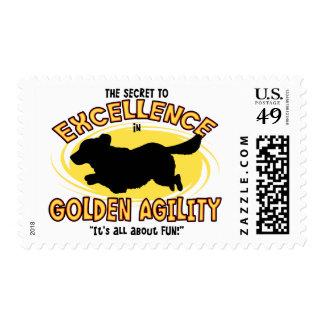 Sellos secretos del golden retriever de la agilida