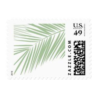 sellos tropicales de las frondas de la palma