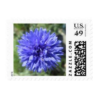 Sellos - USPS - BTN azul de los solteros de Crnflw