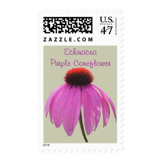 Sellos - USPS - Coneflower - Echina púrpuras