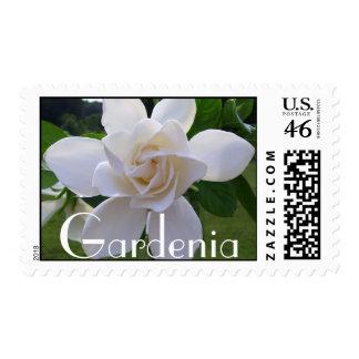 Sellos - USPS - Gardeni naturalmente magnífico