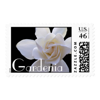 Sellos - USPS - Gardenia en negro