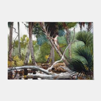 """Selva 24"""" de la Florida x 36"""" estera de puerta Felpudo"""