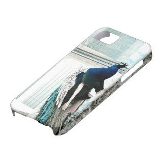 Selva concreta iPhone 5 Case-Mate protectores