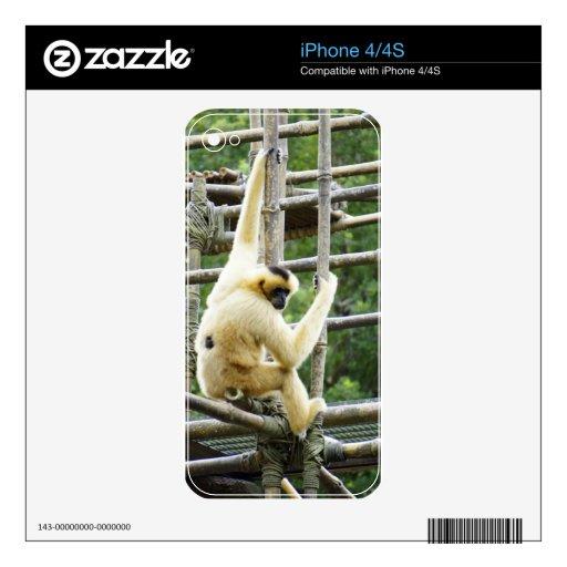 Selva Jim iPhone 4S Calcomanía
