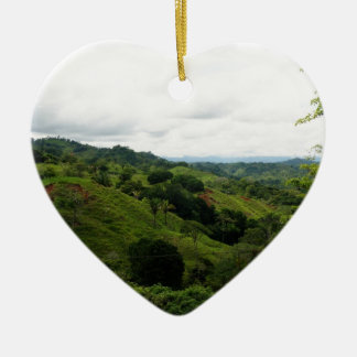 Selva tropical de Costa Rica Adorno Navideño De Cerámica En Forma De Corazón
