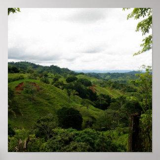 Selva tropical de Costa Rica Poster