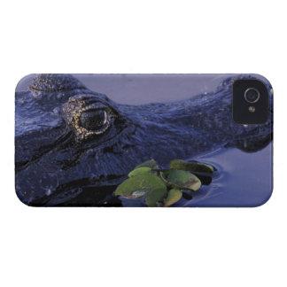 Selva tropical de Suramérica, el Brasil, el Amazon Case-Mate iPhone 4 Protector