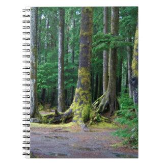 Selva tropical de Washington Spiral Notebooks