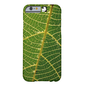 selva tropical del steeptakeoff funda de iPhone 6 barely there