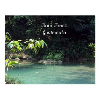 Selva tropical, Guatemala Tarjeta Postal