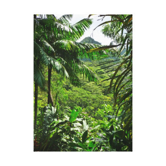 Selva tropical hawaiana impresion de lienzo