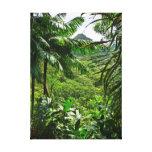 Selva tropical hawaiana impresiones en lona estiradas