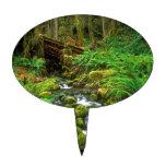 Selva tropical NP olímpico Palillos De Tarta