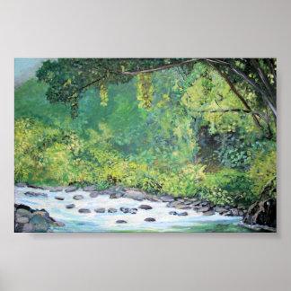 Selva tropical - poster