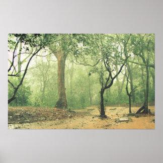 Selva tropical tropical Ghats occidental la India Impresiones