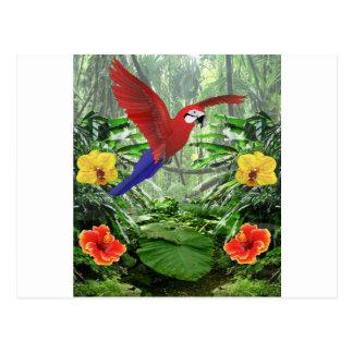 Selva tropical tropical tarjeta postal